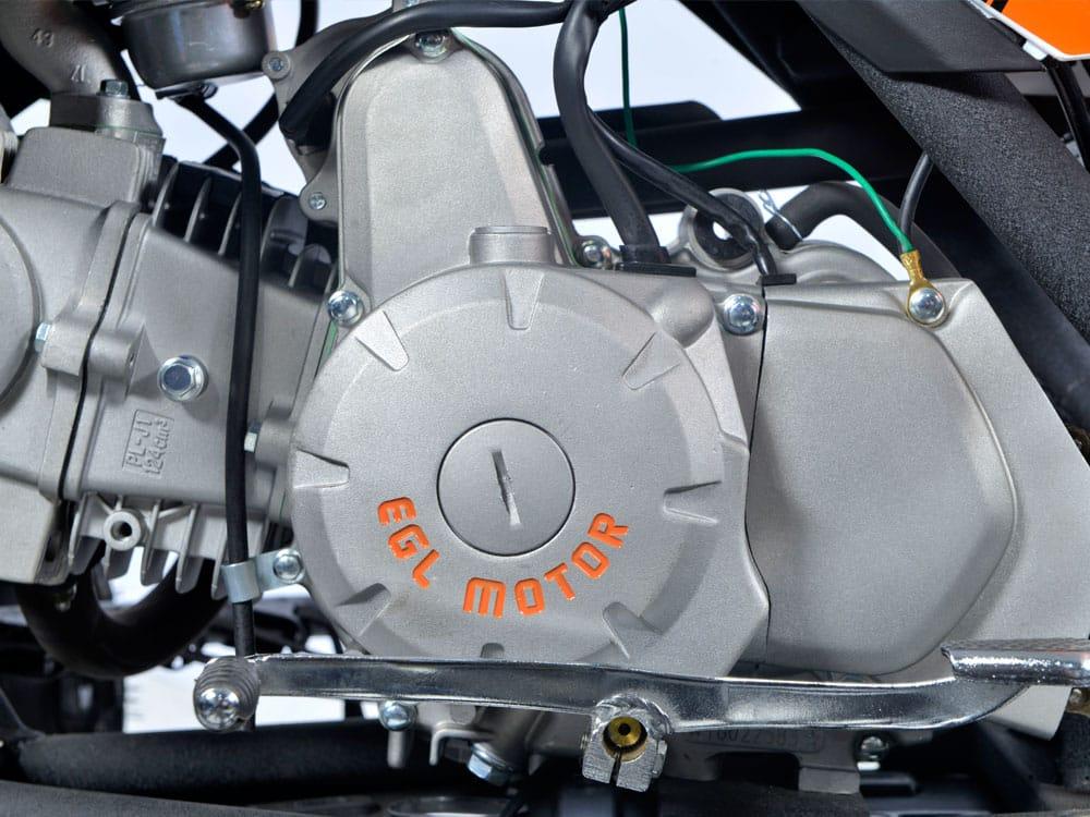 Egl Motor